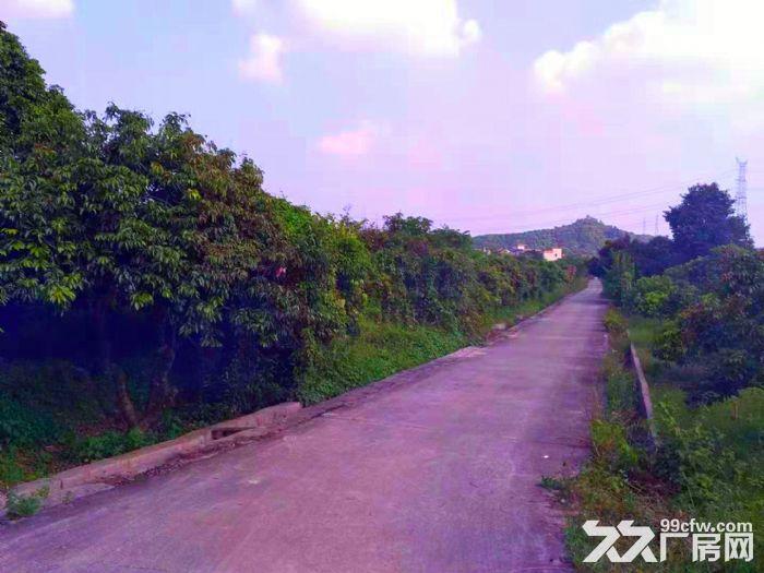 从化区太平镇神棋公路附近银林村道边1亩平地果园转让-图(7)