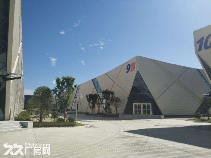 经开区汽车城龙泉框架厂房出租1200平米大开间电子信息有限-图(3)