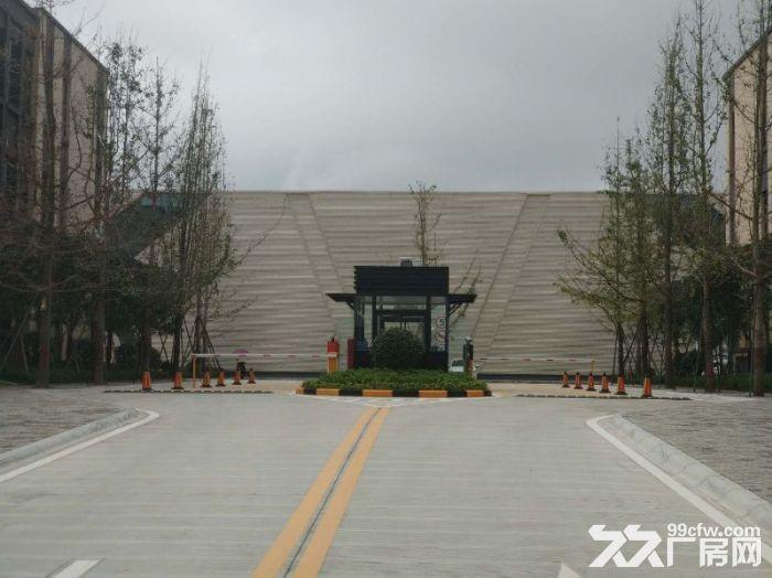 经开区汽车城龙泉框架厂房出租1200平米大开间电子信息有限-图(6)