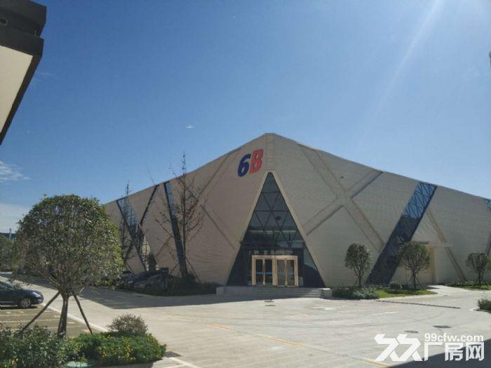 经开区汽车城龙泉框架厂房出租1200平米大开间电子信息有限-图(8)
