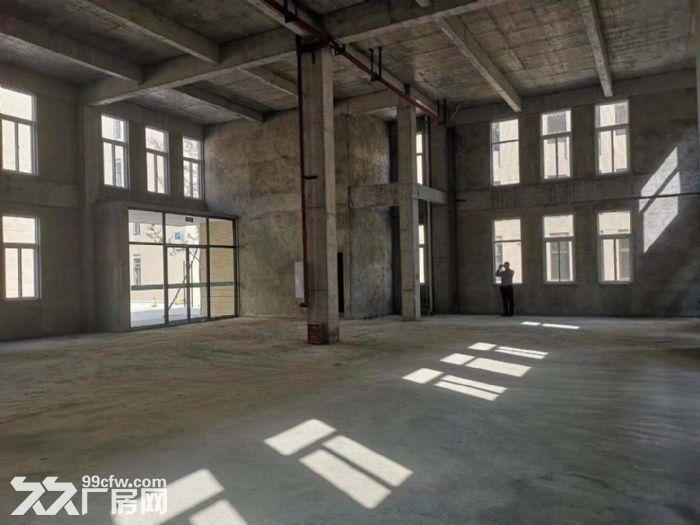 成都框架结构厂房租出可选非中介-图(5)