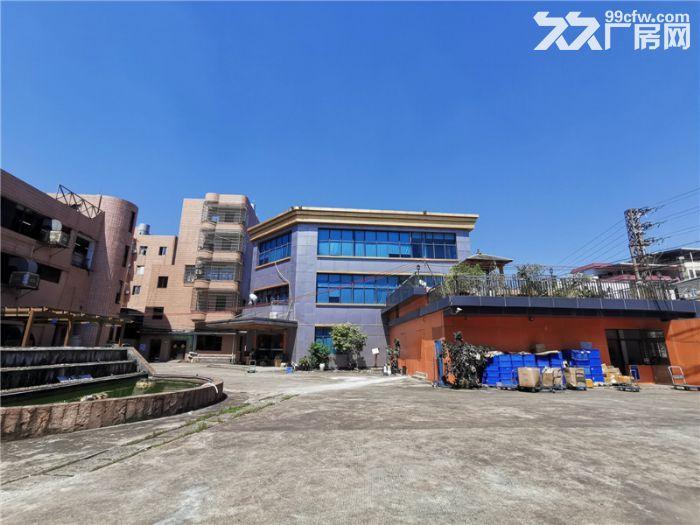 地铁口旁,近南站,番禺钟村4000平方标准厂房出租-图(6)