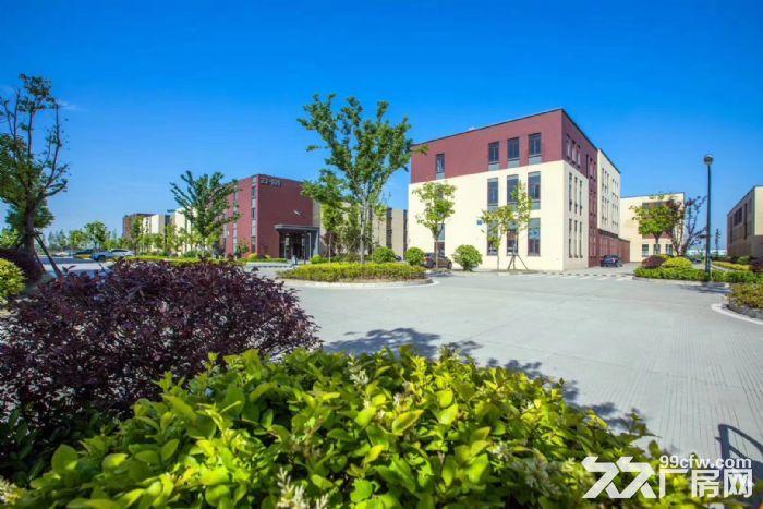 吴中重点项目独栋厂房高标标准绿色产业园区配套宿舍食堂高架路旁绝对好区位-图(6)