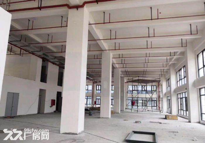 开发商直租莘庄工业区创智园临近航天城大小面积都有环境好-图(2)