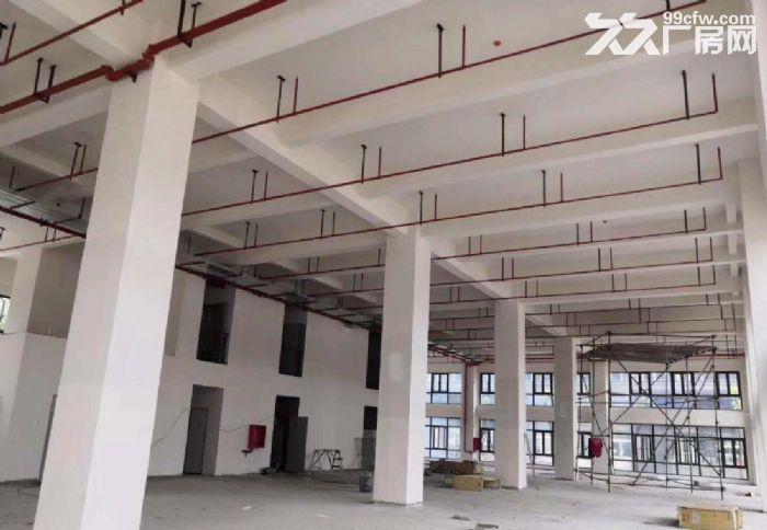 开发商直租莘庄工业区创智园临近航天城大小面积都有环境好-图(4)