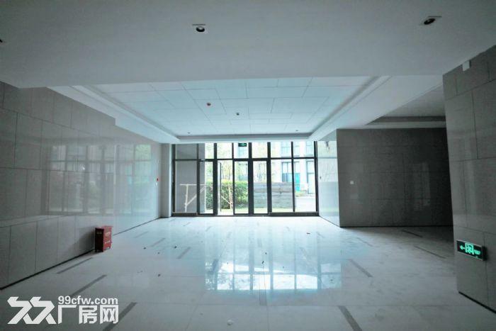 (出租)浦东康桥独栋1700平厂房104板块-图(3)