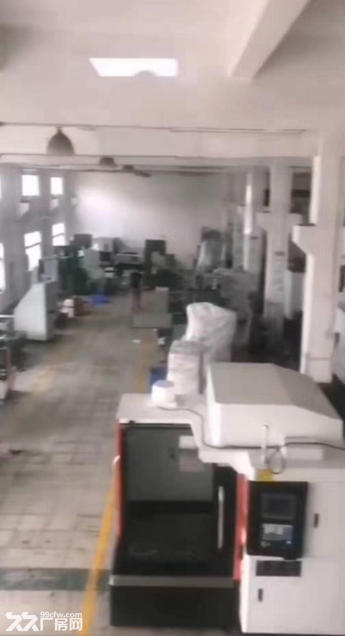 凤岗油甘埔带办公室一楼1600平6米高行车牛角适合各行业-图(3)