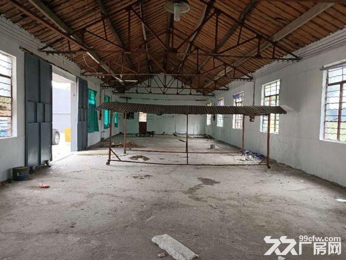 奉城独门独院1800平单层可做纸箱轻加工仓储等行业-图(1)