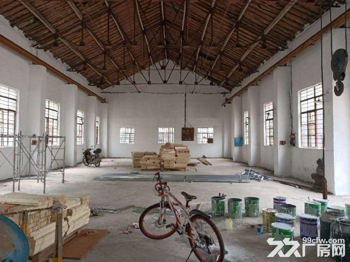 奉城独门独院1800平单层可做纸箱轻加工仓储等行业-图(4)