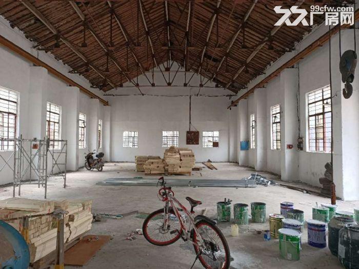 奉城独门独院1800平单层可做纸箱轻加工仓储等行业-图(6)