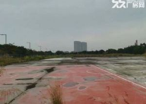 佛山工业用地可报建土地出售50亩