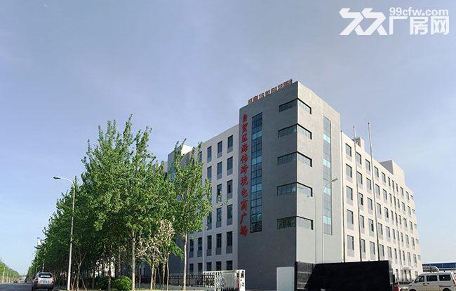 23000平方米天津滨海新区园区资产保税地产整体出售-图(3)