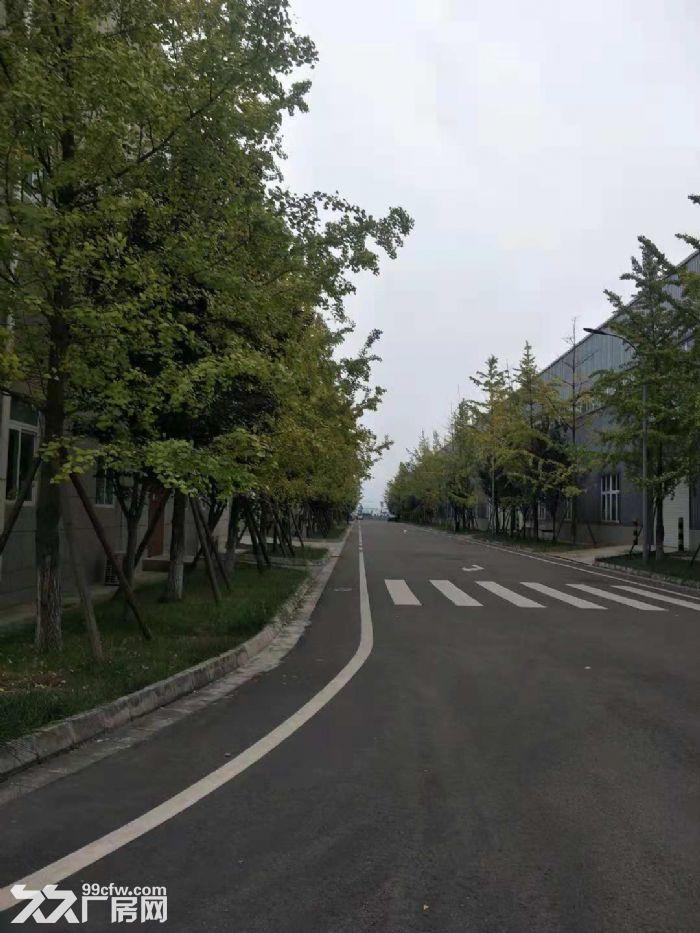 龙泉经开区1900平标准厂房出租,配套齐,手续全-图(2)
