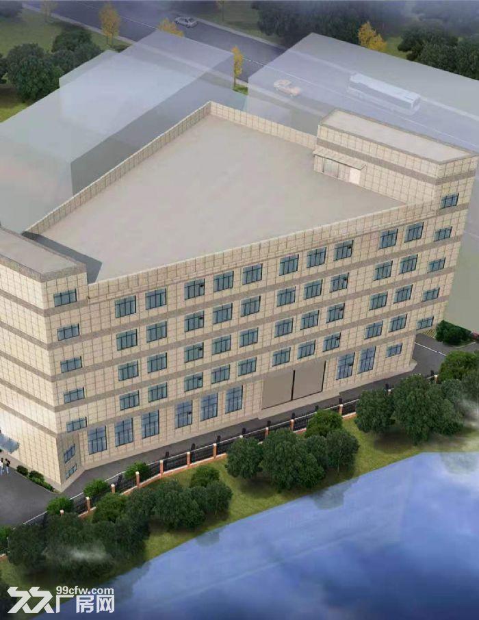 出租城西工业区蓝天路厂房2−5层每层800可分租有货梯-图(1)