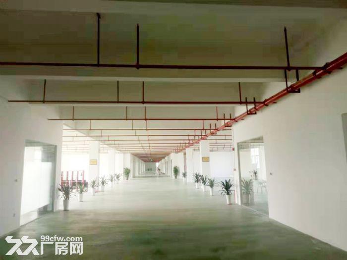 珠海金湾区全新厂房首次对外招租,价格低,环境好,公寓、食堂、娱乐配套齐全-图(4)