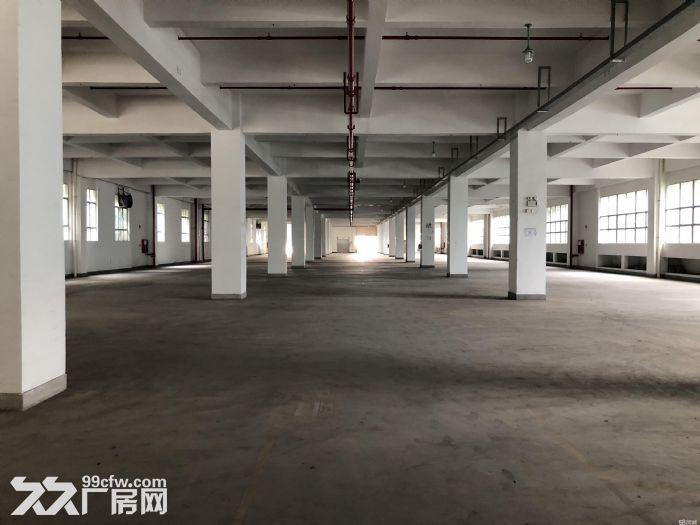 深圳20万平方厂方出租、有钢结构、有正规厂方、高8米、楼上6米、可分租、带红本、-图(1)