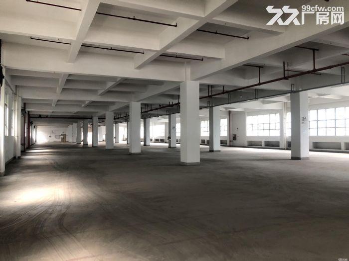 深圳20万平方厂方出租、有钢结构、有正规厂方、高8米、楼上6米、可分租、带红本、-图(2)