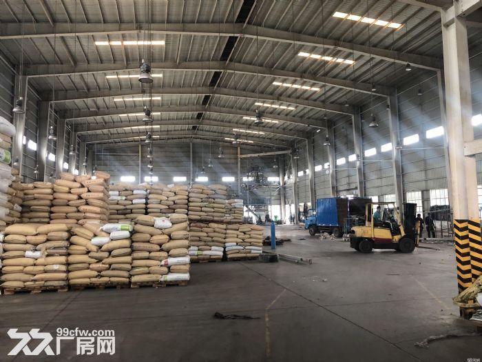 深圳20万平方厂方出租、有钢结构、有正规厂方、高8米、楼上6米、可分租、带红本、-图(3)