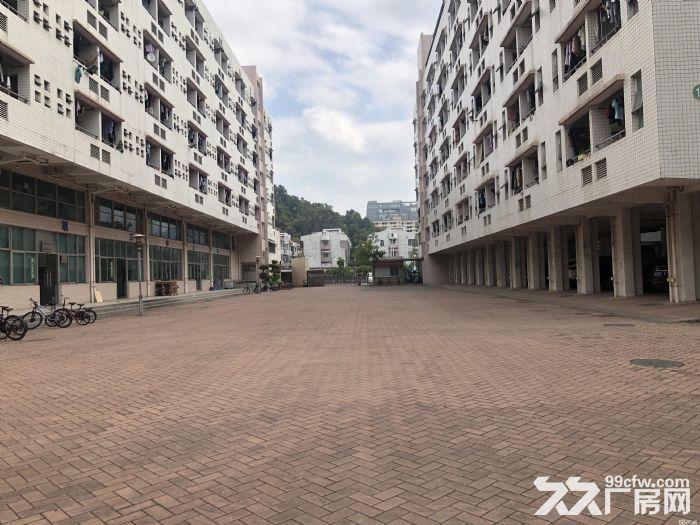 深圳20万平方厂方出租、有钢结构、有正规厂方、高8米、楼上6米、可分租、带红本、-图(6)