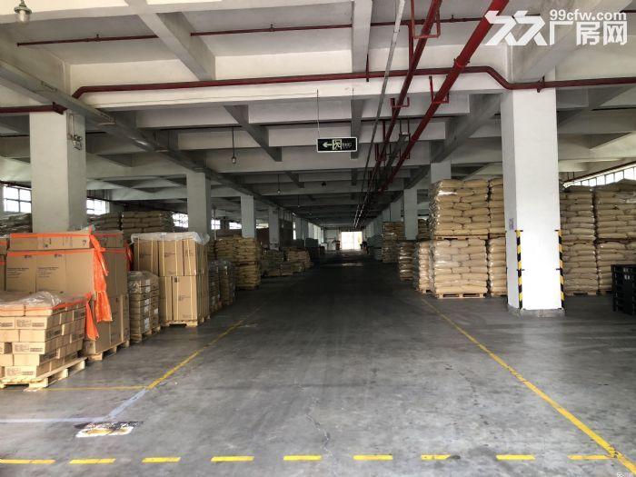 深圳20万平方厂方出租、有钢结构、有正规厂方、高8米、楼上6米、可分租、带红本、-图(7)