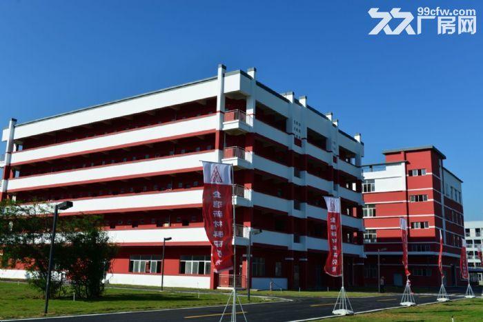 金湾全新厂房办公室出租大院子绿化好停车位置多价格低-图(2)