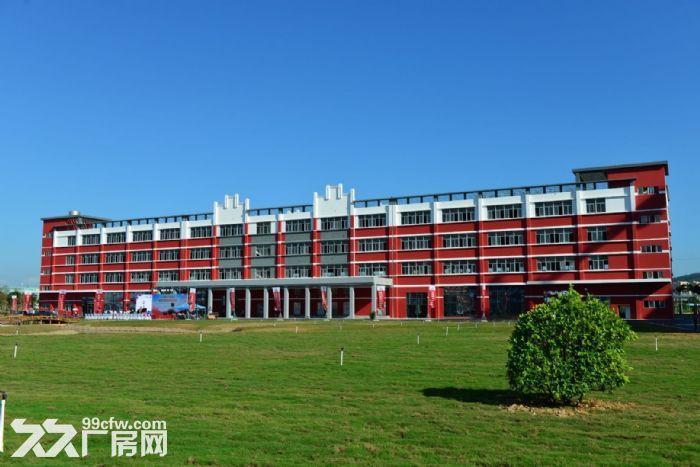 金湾全新厂房办公室出租大院子绿化好停车位置多价格低-图(3)