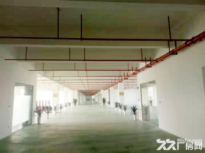 金湾全新厂房办公室出租大院子绿化好停车位置多价格低-图(4)