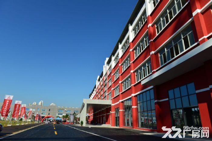 金湾标准厂房3000平、1000平可整租或分租消防喷淋齐全-图(1)