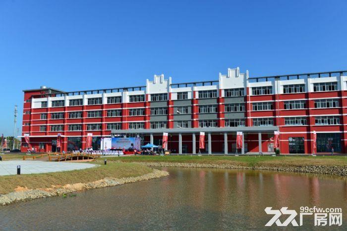 金湾标准厂房3000平、1000平可整租或分租消防喷淋齐全-图(2)