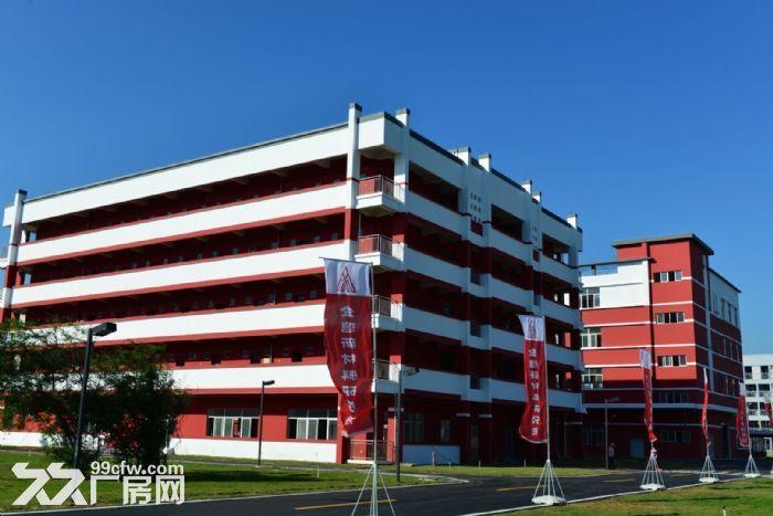 金湾标准厂房3000平、1000平可整租或分租消防喷淋齐全-图(3)