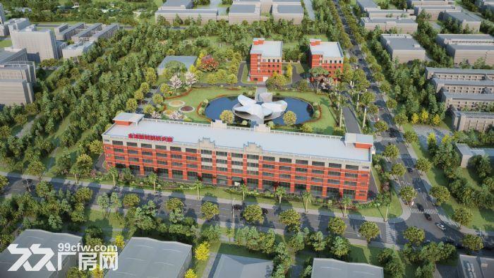 金湾标准厂房3000平、1000平可整租或分租消防喷淋齐全-图(5)