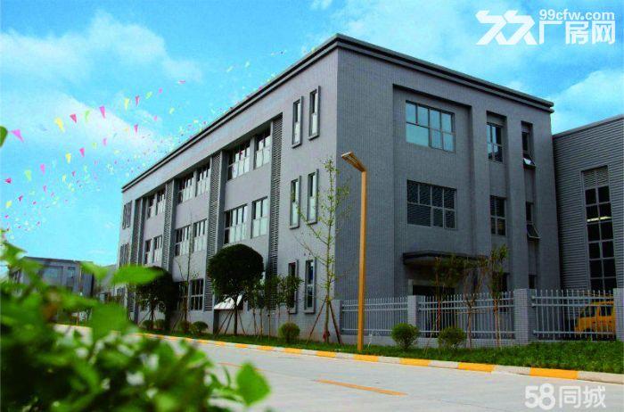 天府新区·成新蒲·园区厂房出租出售·独门独院·可分割-图(3)