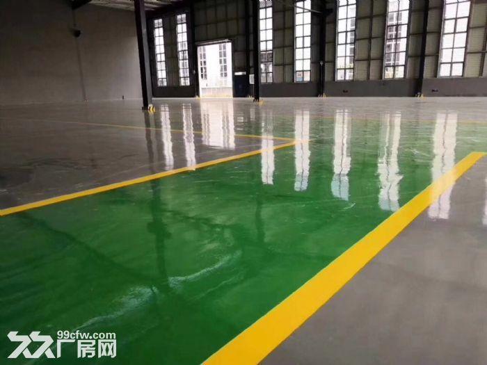 天府新区浩旺工业园5000平厂房出租出售独门独院-图(2)