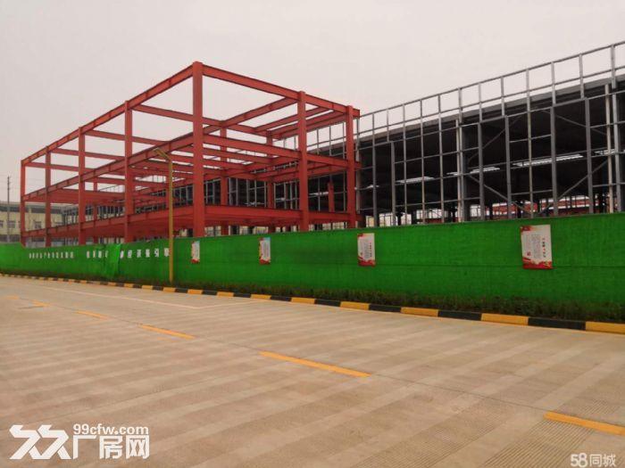 天府新区浩旺工业园5000平厂房出租出售独门独院-图(4)