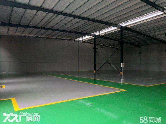 天府新区浩旺工业园5000平厂房出租出售独门独院-图(3)
