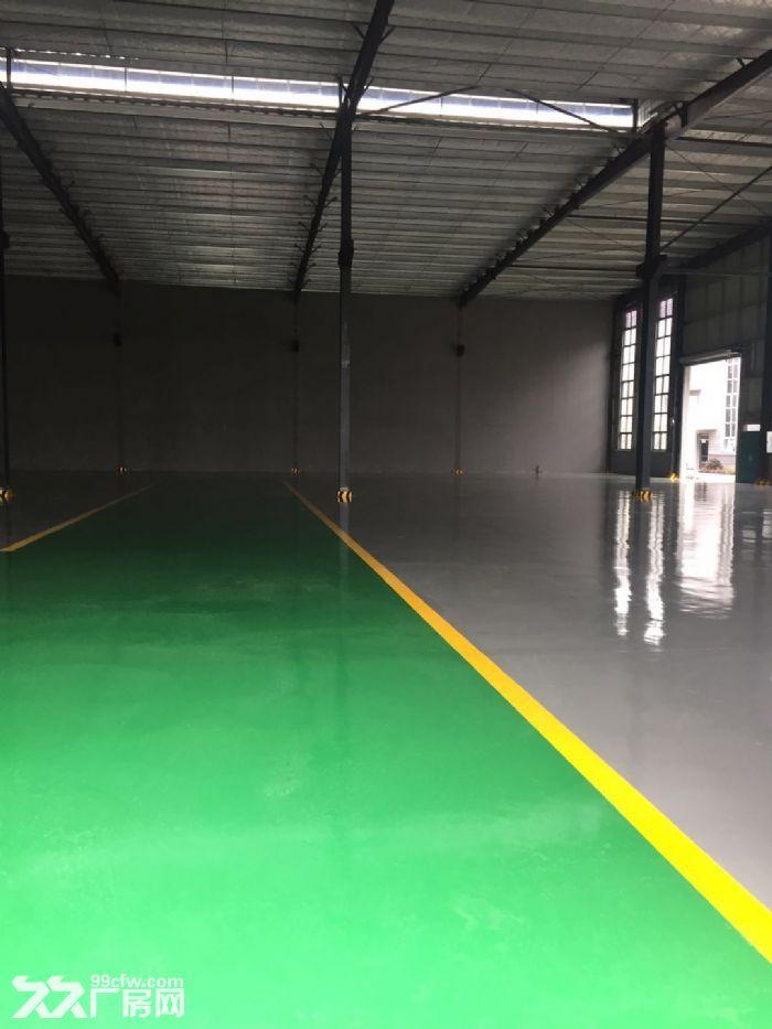 天府新区浩旺工业园5000平厂房出租出售独门独院-图(8)