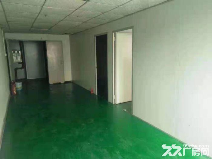 在主干道旁凤岗工业园楼上带装修厂房出租2400平可办环评-图(4)