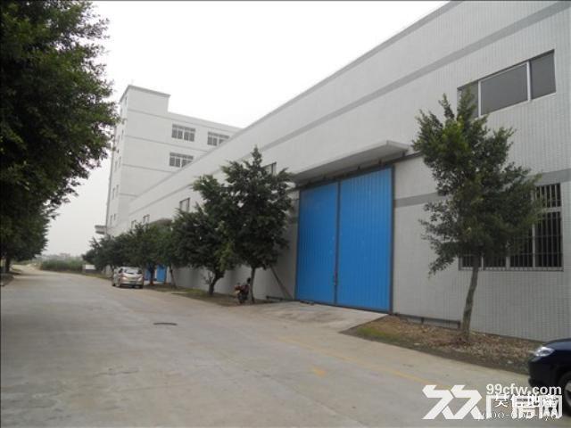独院钢构3300平方厂房出租-图(1)