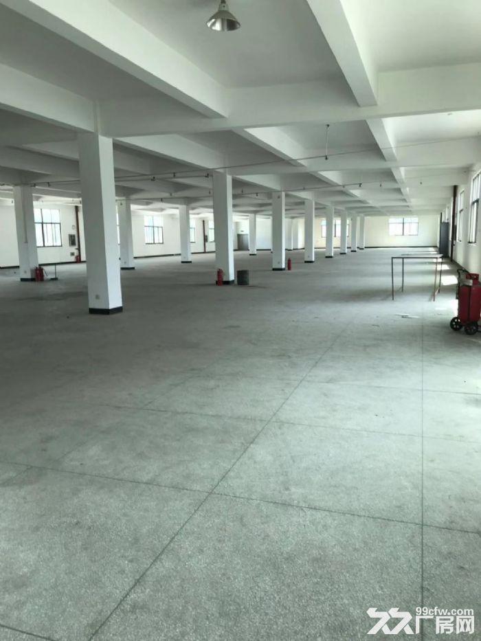 长泰兴泰工业区独院厂房部分招租-图(4)