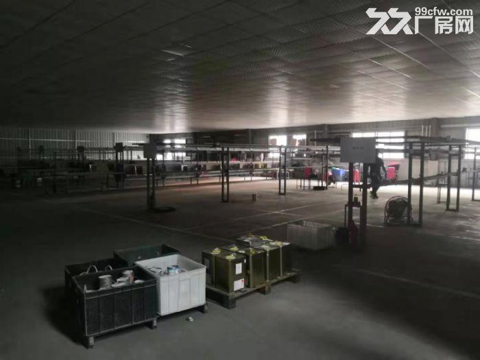 江门台山台城现成塑胶玩具配件厂房出租配套齐全2000平方-图(2)