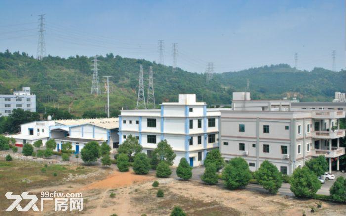 长泰兴泰工业区独院厂房部分招租-图(2)