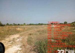 惠州市惠城区国有证土地出售14000平1400元每平方