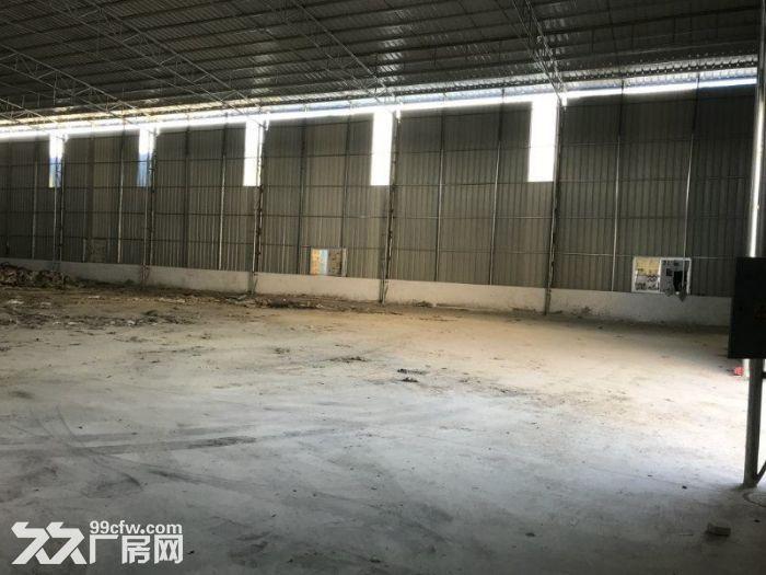 全新厂房1200方高8米15元(世联行不收费)-图(4)