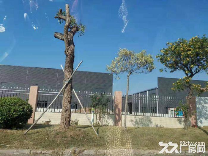 出租清远石角《20000方单一层钢构厂房》可分租,电大-图(1)