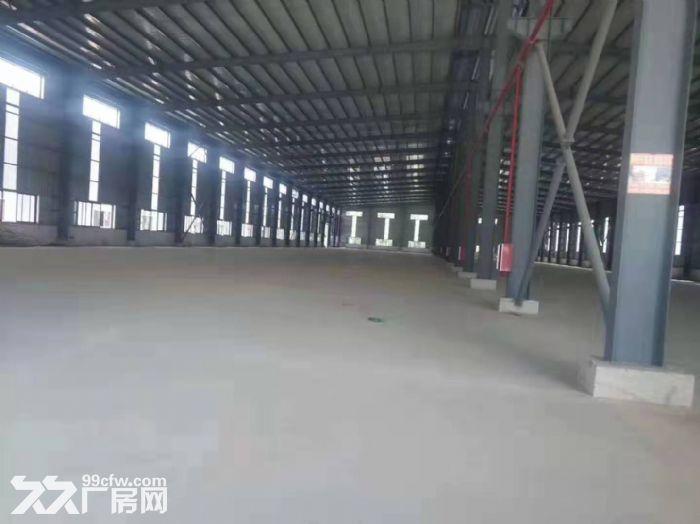 出租清远石角《20000方单一层钢构厂房》可分租,电大-图(5)