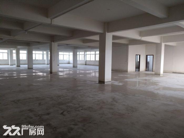 个人出租东西湖区七雄路仓库-图(6)