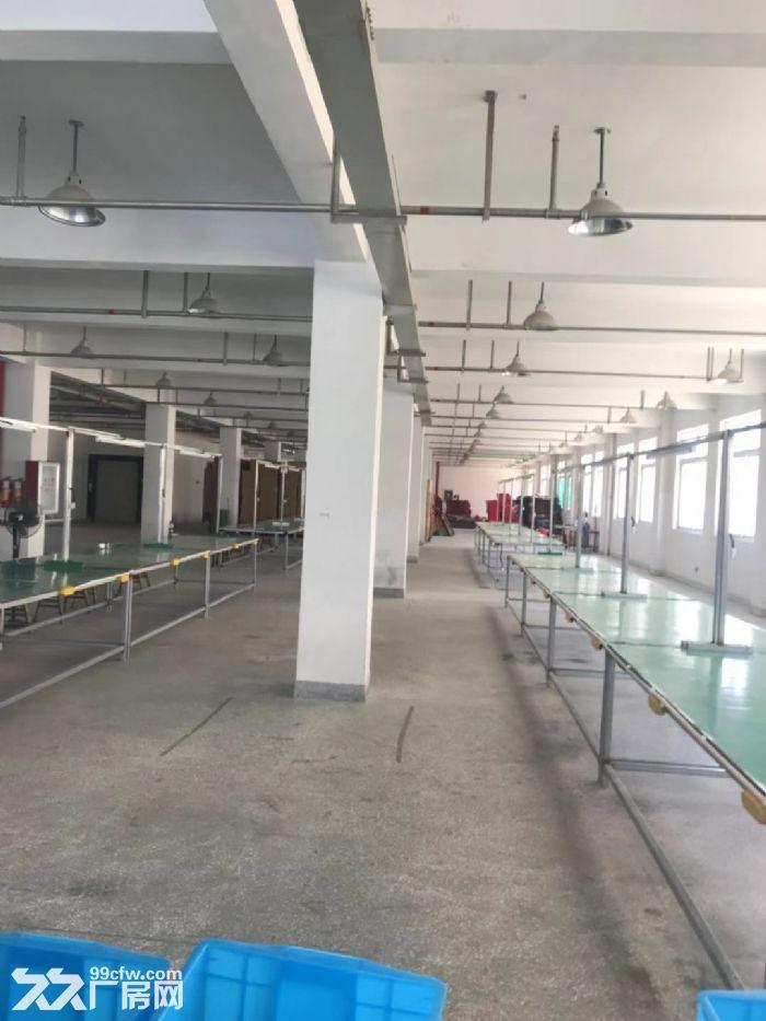 仙岩工业区厂房3500平米出租适合各种行业。-图(3)