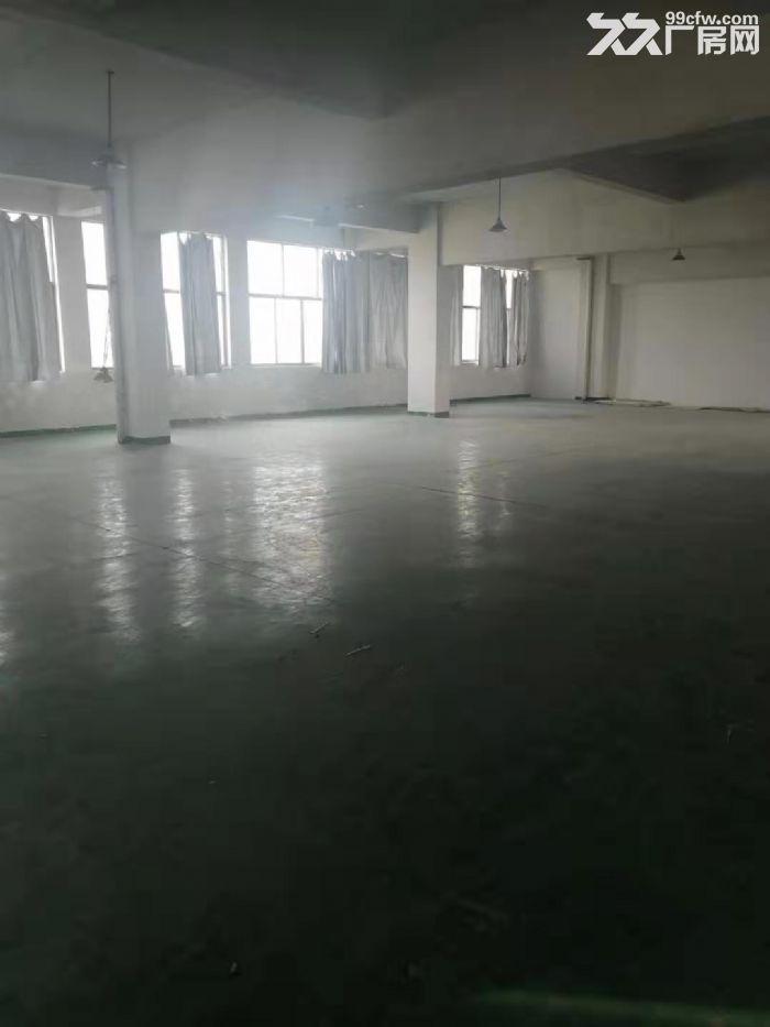 永康城西新区西塔二路1000㎡厂房出租-图(1)