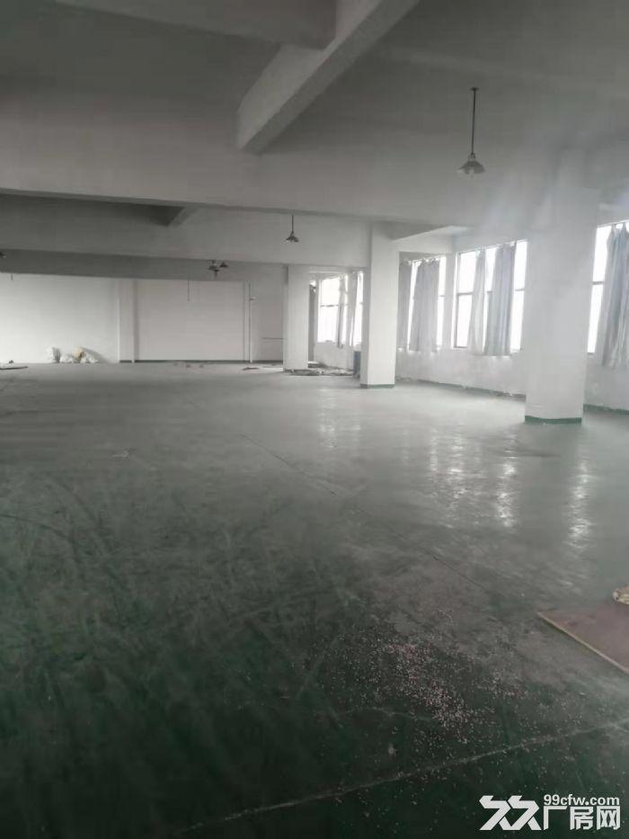 永康城西新区西塔二路1000㎡厂房出租-图(2)