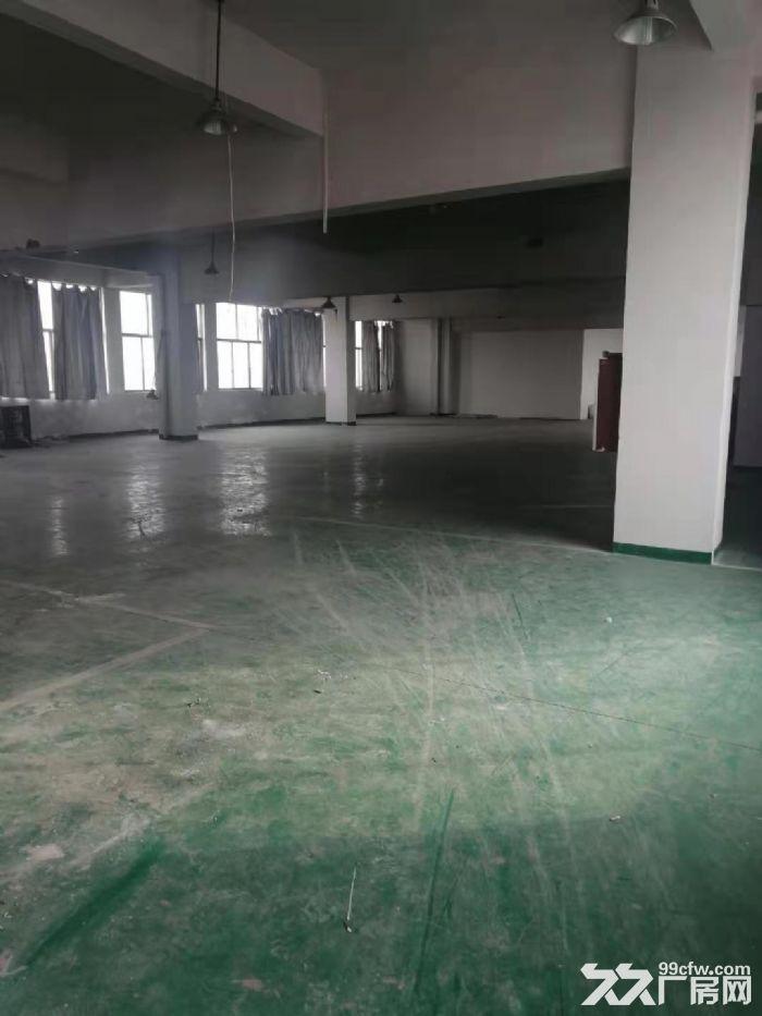 永康城西新区西塔二路1000㎡厂房出租-图(5)